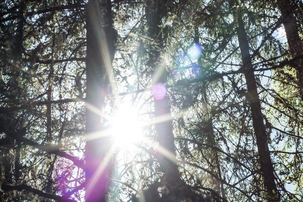 solar-systo-02.jpg