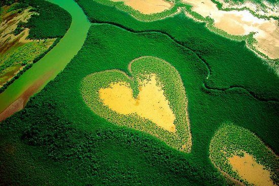 hearts-in-nature01.jpg