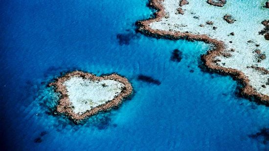 hearts-in-nature05.jpg