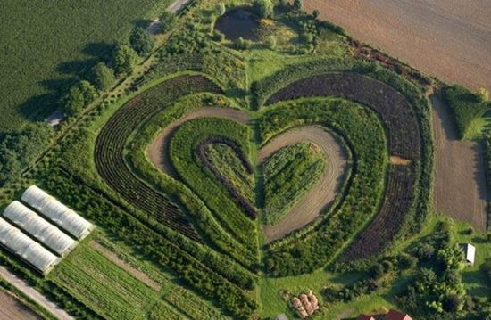 hearts-in-nature10.jpg