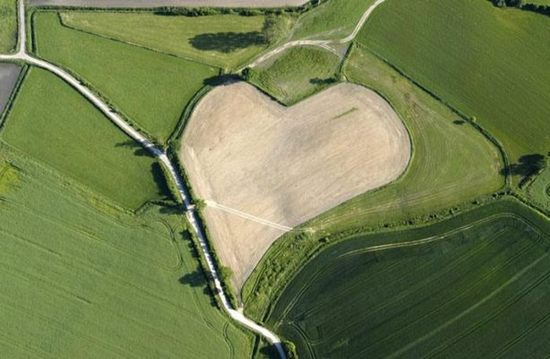 hearts-in-nature11.jpg