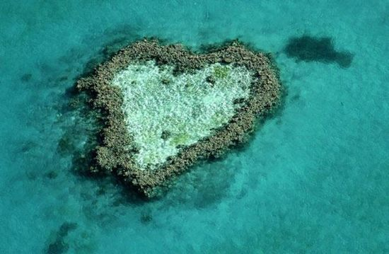 hearts-in-nature14.jpg