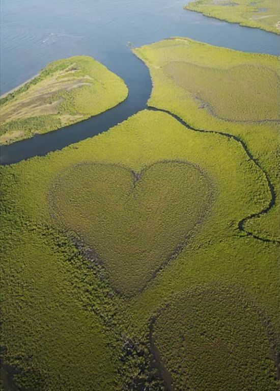 hearts-in-nature17.jpg