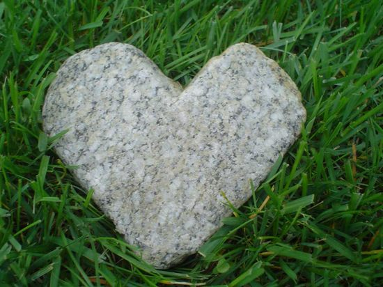 hearts-in-nature22.jpg