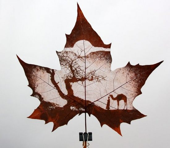 leaf-carving-art09.jpg