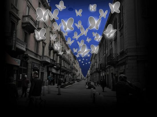 led-butterflies03.jpg