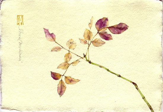 watercolors06.jpg